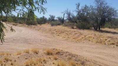 Tucson Residential Lots & Land For Sale: 11685 W Via Dichosa