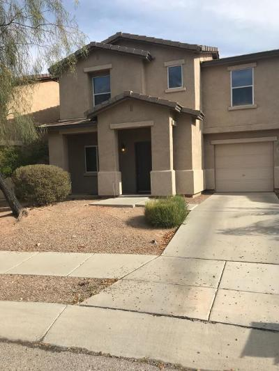 Tucson Single Family Home For Sale: 3326 N Sierra Springs Drive