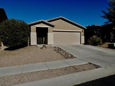 Pima County Single Family Home For Sale: 9333 N June Bug Drive