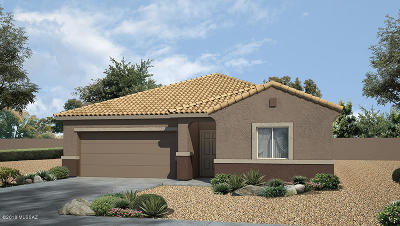 Tucson Single Family Home For Sale: 9070 W Old Agave Trail