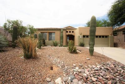Pima County, Pinal County Single Family Home For Sale: 5371 N Spring Canyon Place