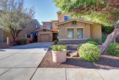 Tucson Single Family Home For Sale: 2730 E Scenic Overlook Place