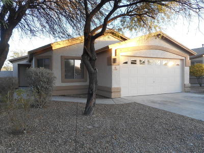 Tucson Single Family Home For Sale: 4589 S Valley Road