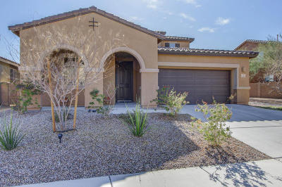 Tucson Single Family Home For Sale: 11398 E Fleeting Sunset Trail