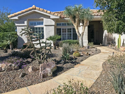 Pima County Single Family Home For Sale: 14343 N Green Meadow Lane