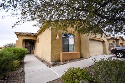 Pima County Single Family Home For Sale: 12707 N Gentle Rain Drive N