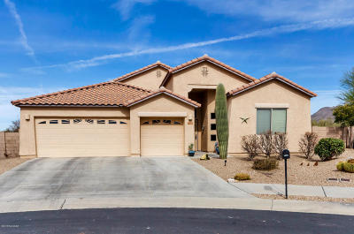 Pima County Single Family Home For Sale: 12371 N Lost Shadow Court