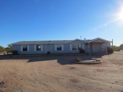 Marana Single Family Home For Sale: 33565 S Brahma Trail
