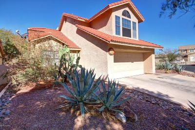 Tucson Single Family Home For Sale: 9013 N Twain Street
