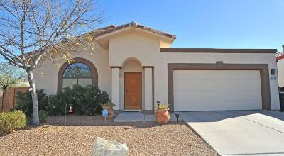 Tucson Single Family Home For Sale: 9537 E Kokopelli Circle