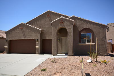 Marana Single Family Home For Sale: 9839 N Buzzing Bee Trail