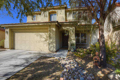 Tucson Single Family Home For Sale: 3317 N Pebble Rapids