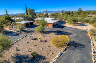 Tucson Single Family Home For Sale: 7009 N 1st Avenue