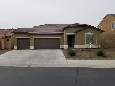 Marana Single Family Home For Sale: 12545 N Green Oak Drive