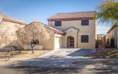 Tucson Single Family Home For Sale: 6009 S Raven Rock Road