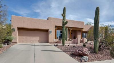 Tucson Single Family Home For Sale: 3766 N Creek Side Place