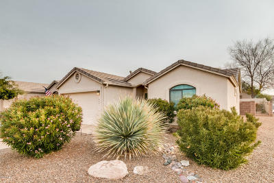 Tucson Single Family Home For Sale: 8543 S Masthead Drive