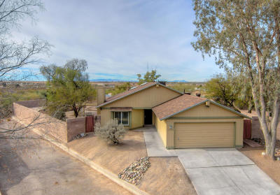 Tucson Single Family Home For Sale: 3740 S Giovanna Drive