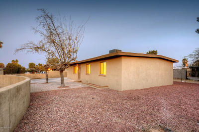 Tucson Single Family Home For Sale: 4801 S Camino De La Plaza S