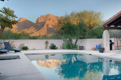 Oro Valley Single Family Home For Sale: 620 W Bangalor Drive