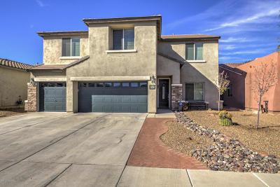 Sahuarita Single Family Home For Sale: 393 E Via Puente Lindo