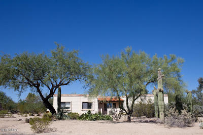 Green Valley  Single Family Home For Sale: 17842 S Placita Octubre