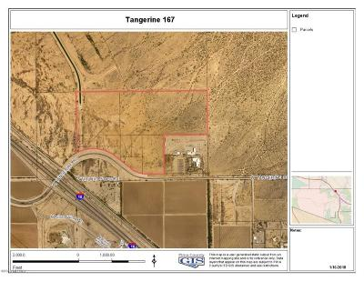 Pima County Residential Lots & Land For Sale: 9190 W Tangerine Road