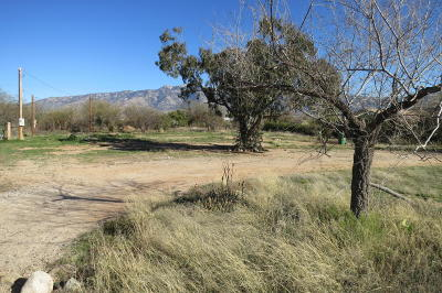 Residential Lots & Land For Sale: 16570 N Avenida De La Canada