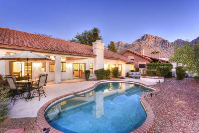 Oro Valley Single Family Home For Sale: 10325 N Calle Del Carnero