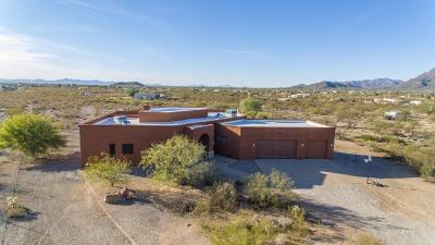 Pima County Single Family Home For Sale: 5460 S Spencer Avenue