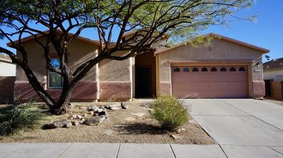 Tucson Single Family Home For Sale: 3347 S Desert Scroll Place