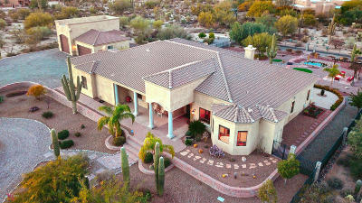 Pima County Single Family Home For Sale: 10235 N Blue Bonnet