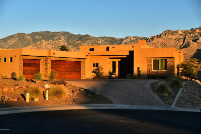 Pima County Single Family Home Active Contingent: 420 E Natasha Court
