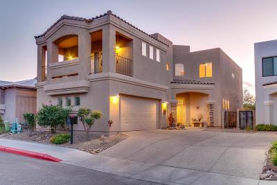 Tucson Single Family Home For Sale: 653 N Encanto Village Way