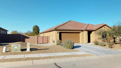 Green Valley Single Family Home For Sale: 892 W Placita Pozanco