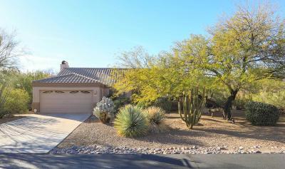 Tucson Single Family Home For Sale: 11229 N Via Rancho Naranjo