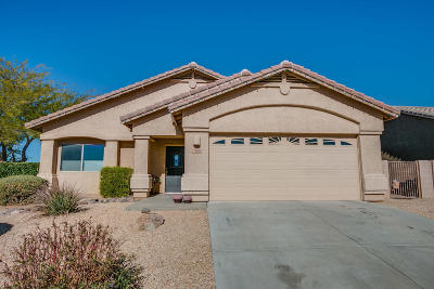 Tucson Single Family Home Active Contingent: 3679 E Fjord Pony