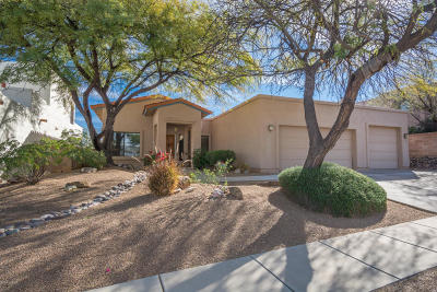 Single Family Home Active Contingent: 775 S Shadow Tree Place