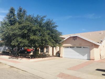 Tucson, Oro Valley, Marana, Sahuarita, Vail Single Family Home For Sale: 7401 S Vista Del Arroyo