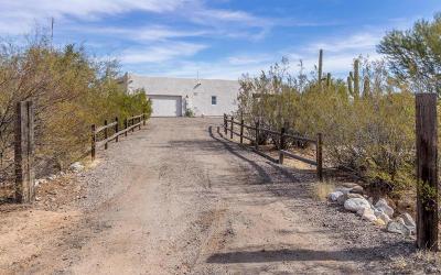 Single Family Home For Sale: 36979 S Azalea Drive
