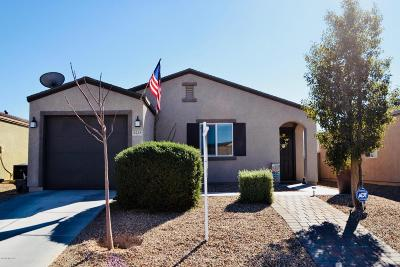 Single Family Home Active Contingent: 5228 E Desert Straw Lane