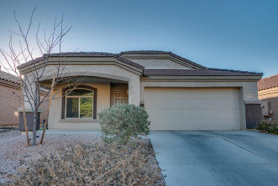 Pima County Single Family Home For Sale: 6678 S Stone Fly Drive