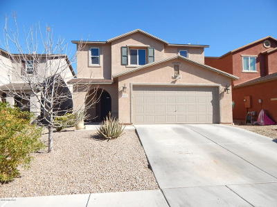 Pima County, Pinal County Single Family Home For Sale: 7037 S Red Maids Drive