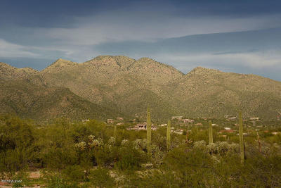 Tucson Residential Lots & Land Active Contingent: 11939 E Placita Rancho Soldados #04