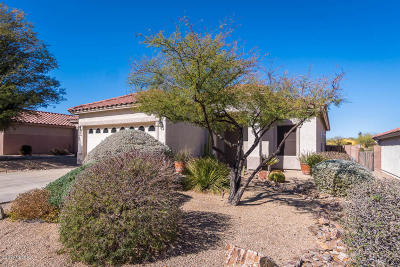 Tucson Single Family Home For Sale: 4084 W Rocky Spring Drive