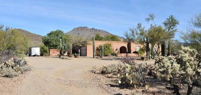 Tucson Single Family Home Active Contingent: 7180 W Bopp Road