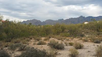 Tucson Residential Lots & Land For Sale: Calle Del Cielo #81