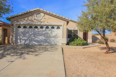 Single Family Home Active Contingent: 12943 N Desert Olive Drive