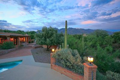 Single Family Home For Sale: 3675 E Via Alcalde
