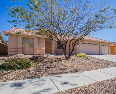 Tucson Single Family Home For Sale: 3265 S Thunder Chorus Road
